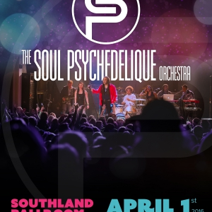 The Soul Psychedelique Orchestra - Elegance, Excitement, Fun!